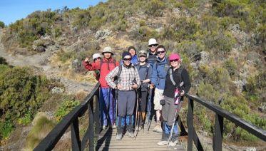 Kilimanjaro Trek - Lemosho