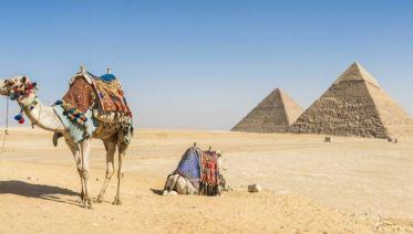 King Ramses Sun Festival with Cruise - 13 days
