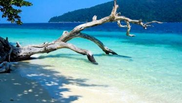 Koh Lipe Plankton & Sunset Eco-Tour