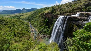 Kruger Park Highlights
