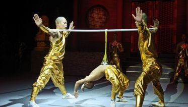 Kung Fu Show In Beijing (Night Tour)