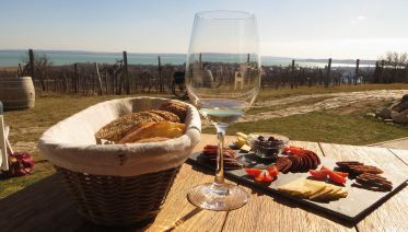 Lake Balaton Full-Day Wine Tour With Lunch