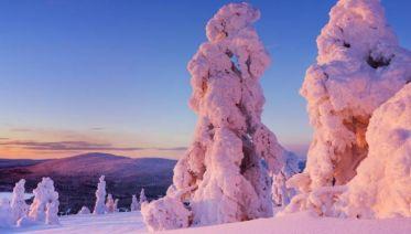 Lapland Explorer - 6 Days