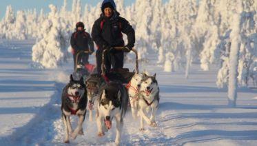 Lapland Wilderness Week