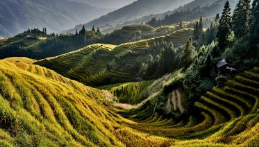 Longji Rice Terraces and Ethnic Villages Tour