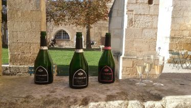 Luxury Champagne Day Trip from Paris with Moët