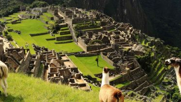 Machu Picchu  Experience - Independent