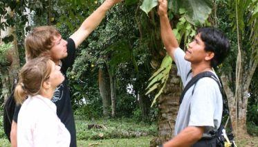 Madidi Amazon Rainforest Air-Expedition 3D/2N