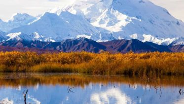 Majestic Alaska with Glacier Discovery Cruise Verandah Stateroom Summer 2018