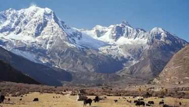 Manaslu Trek - 12 Days