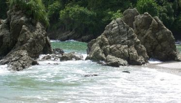 Manuel Antonio National Park Day Trip