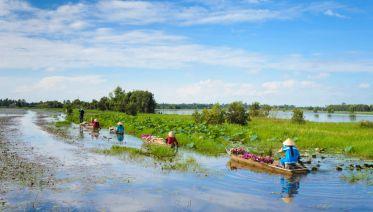 Mekong Delta Day Trip from HCM city W/ Vinh Trang Pagoda