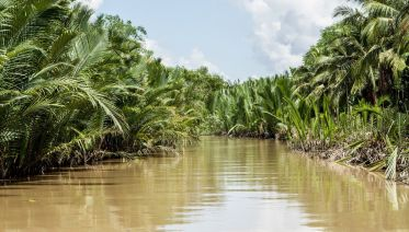Mekong Delta- My Tho & Ben Tre Coconut Village