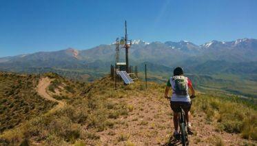 Mendoza Half-Day Bike Tour