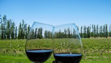 Mendoza Wine & Mountains Adventure 4D/3N