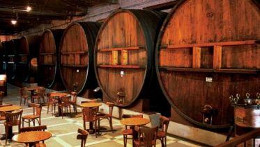 Mendoza Wineries Independent Adventure