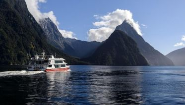 Milford Sound & Cruise Adventure