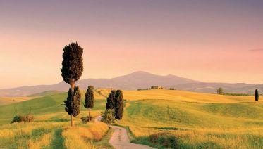 Montalcino, Pienza & Montepulciano Tour from Pisa