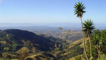 Monteverde Cloudforest Essences