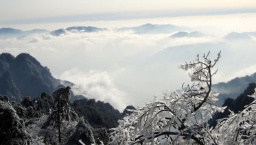Mount Huangshan One Day Group Tour