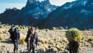 Mount Kenya Ascent