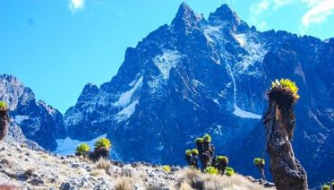 Mount Kenya Trek (Sirimon Route) 4D/3N