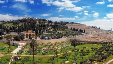 Mount of Olives Experience