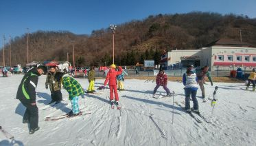 Nami Island Tour & Skiing Lesson