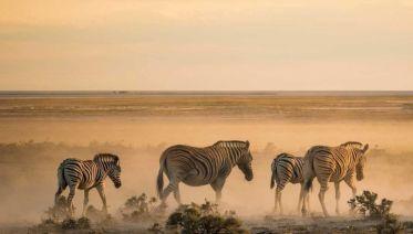 Namibia Adventure