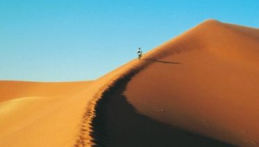 Namibian Explorer In Comfort