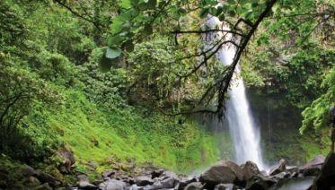 Monteverde Cloud Forest Biological Preserve Tours