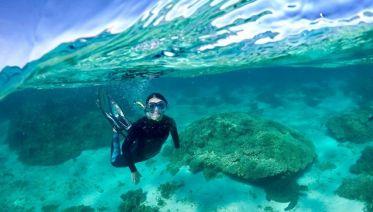 Ningaloo Reef Kayaking & Snorkeling Tour