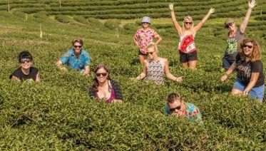 Northern Thailand & Laos Adventure