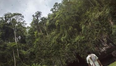 Northern Thailand Sampler