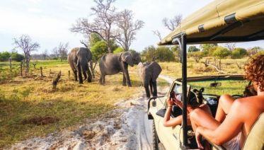 Okavango Delta & Deserts