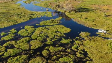 Okavango Delta Fly-In Safari