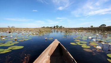 Okavango Wilderness Trail Accommodated