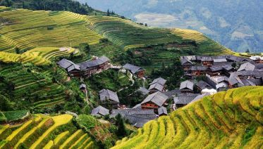 One Day Longji Rice Terraces Group Tour