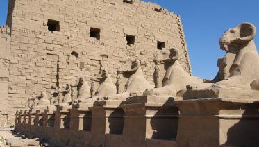 One Week In Egypt