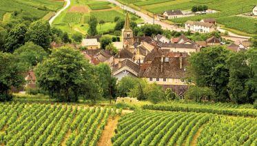 Paris to Nice through Vineyards & Mountains