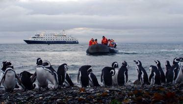 Patagonia Cruise: Ushuaia To Punta Arenas