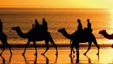 Perth to Darwin Overland
