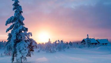 Polar Adventure