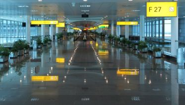Private Arrival Transfer From Cairo Airport  To Hotel