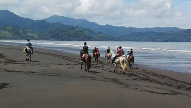 Private Beach, Rainforest & Mangrove Horseback Ride