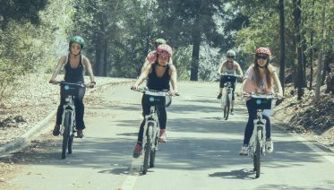 Private: The Parks E-Bike Tour -  Santiago, Chile