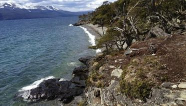 Private Tierra Del Fuego National Park Tour