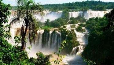 Private Trip to Brazilian Iguazu Falls & Bird Park Tour