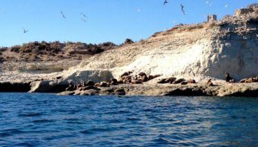Puerto Madryn Explorer 3D/2N