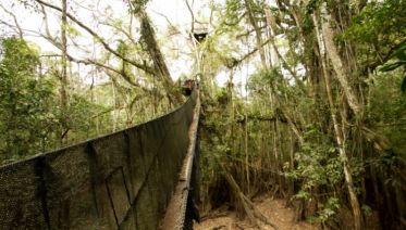 Puerto Maldonado Amazon Eco-Lodge 3D/2N (from Puerto Maldonado)